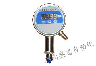 压力变送控制器SNMPM484